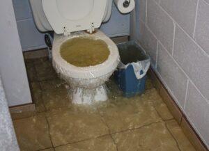 Desentupimento de vasos sanitários em Anália Franco